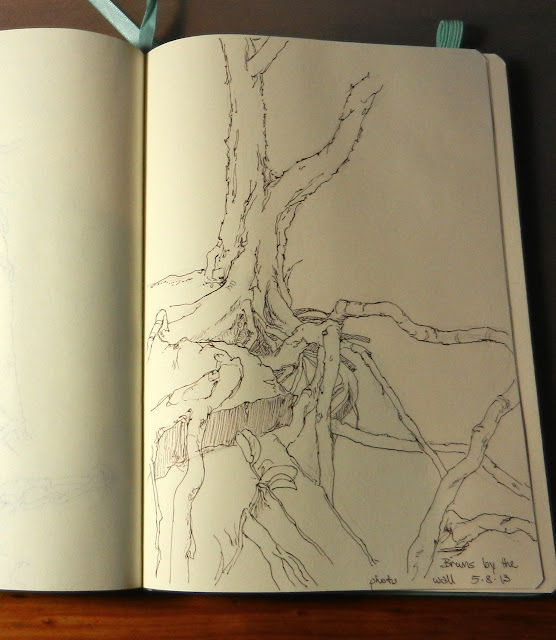 drawing of tree roots in a sketchbook