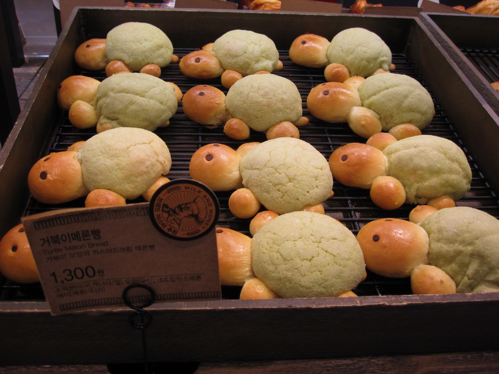 JSE Seoul Searching: Turtle Melon Bread
