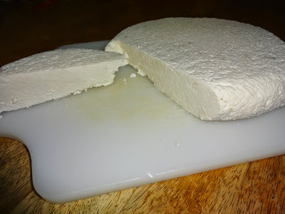 Homemade paneer