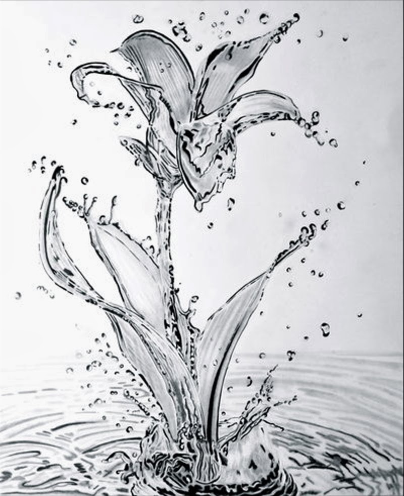 08-Water-Lily-Paul-Shanghai-Hyper-Realistic-Water-Pencil-Drawings-www-designstack-co