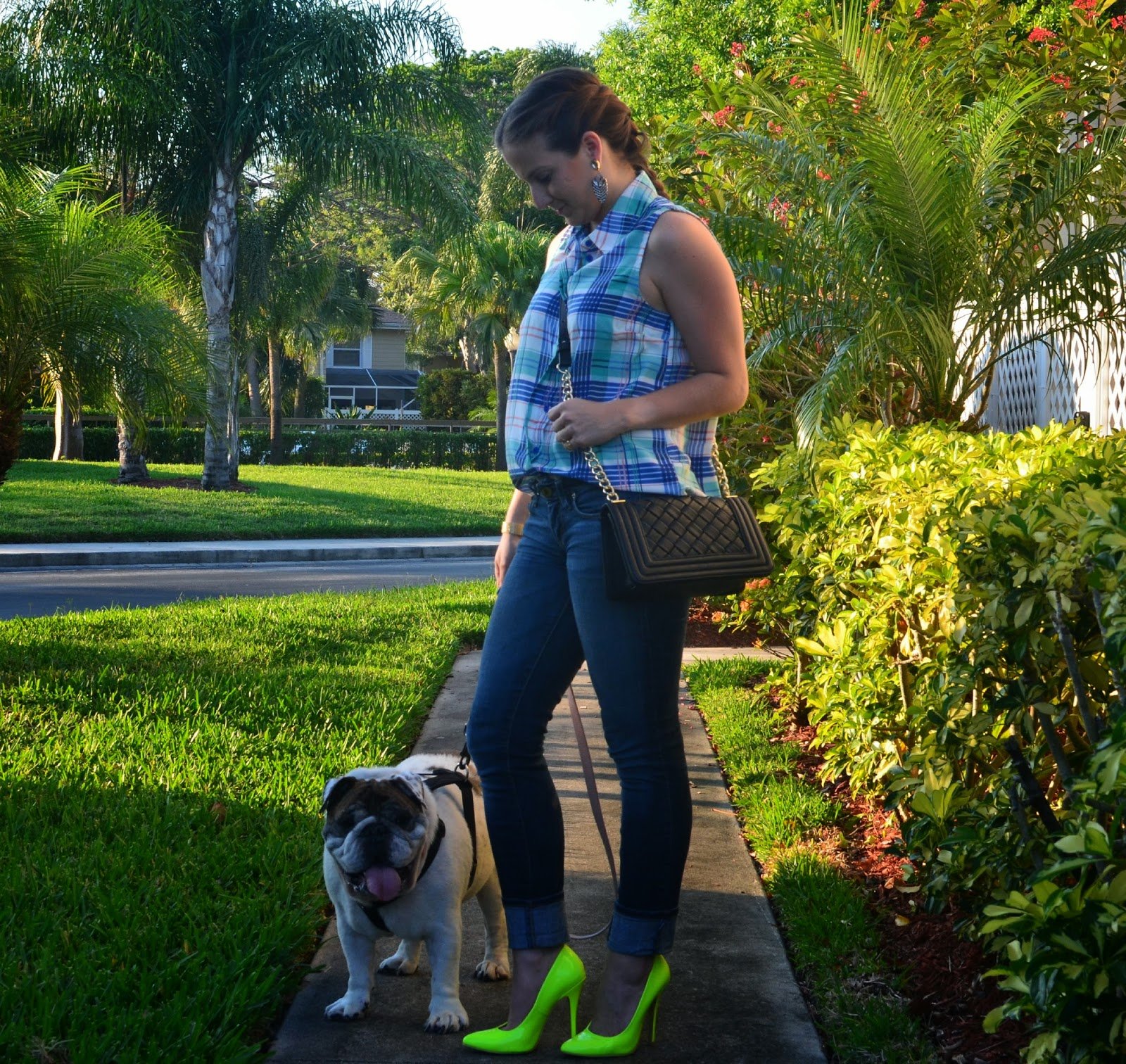 Skinny jeans - neon pumps - madras top - black clucth - english bulldog