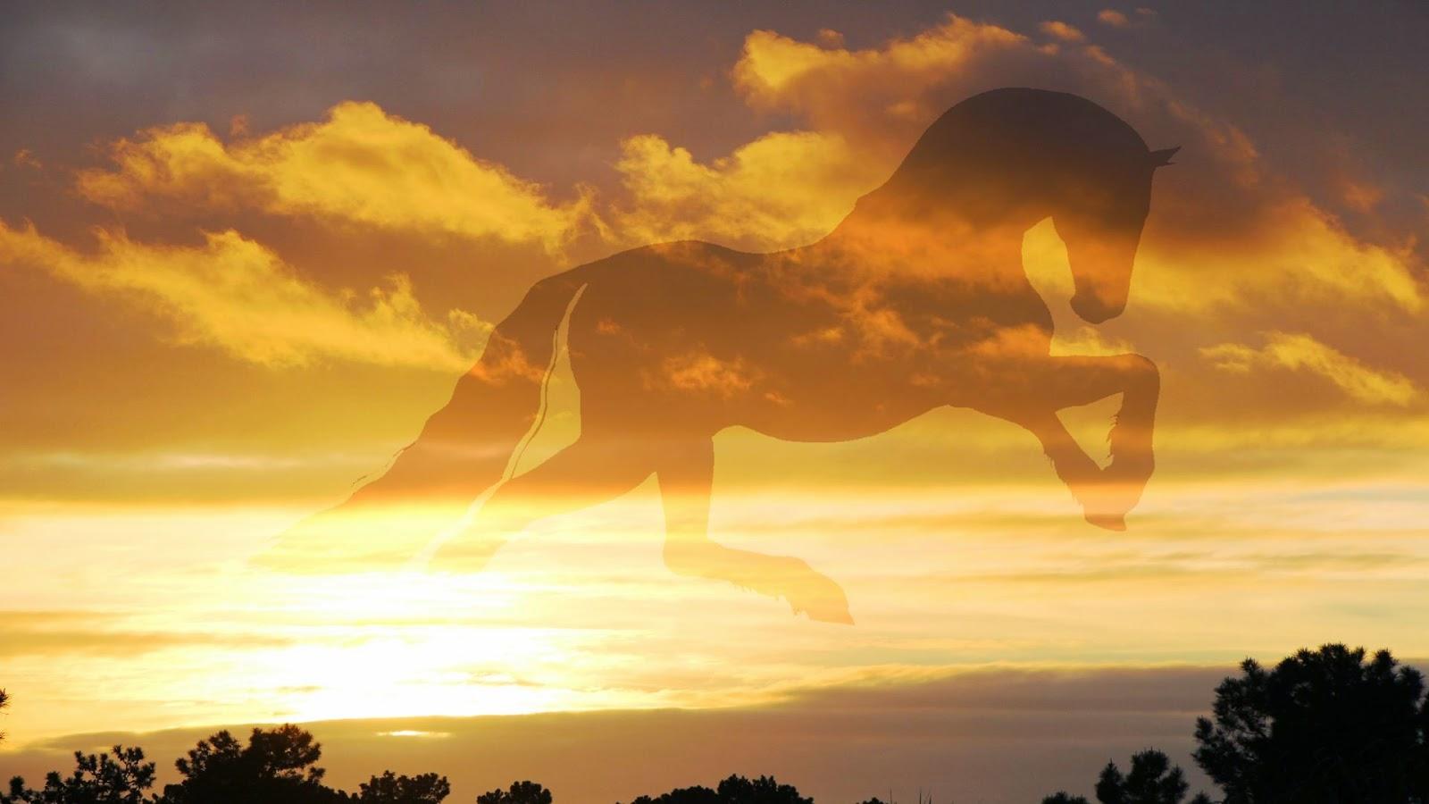 Cavalgando o céu Dourado 1920 x 1080 - PaintNET