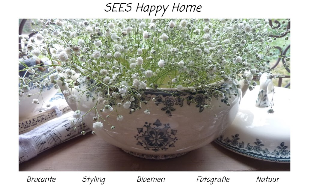 Sees Happy Home