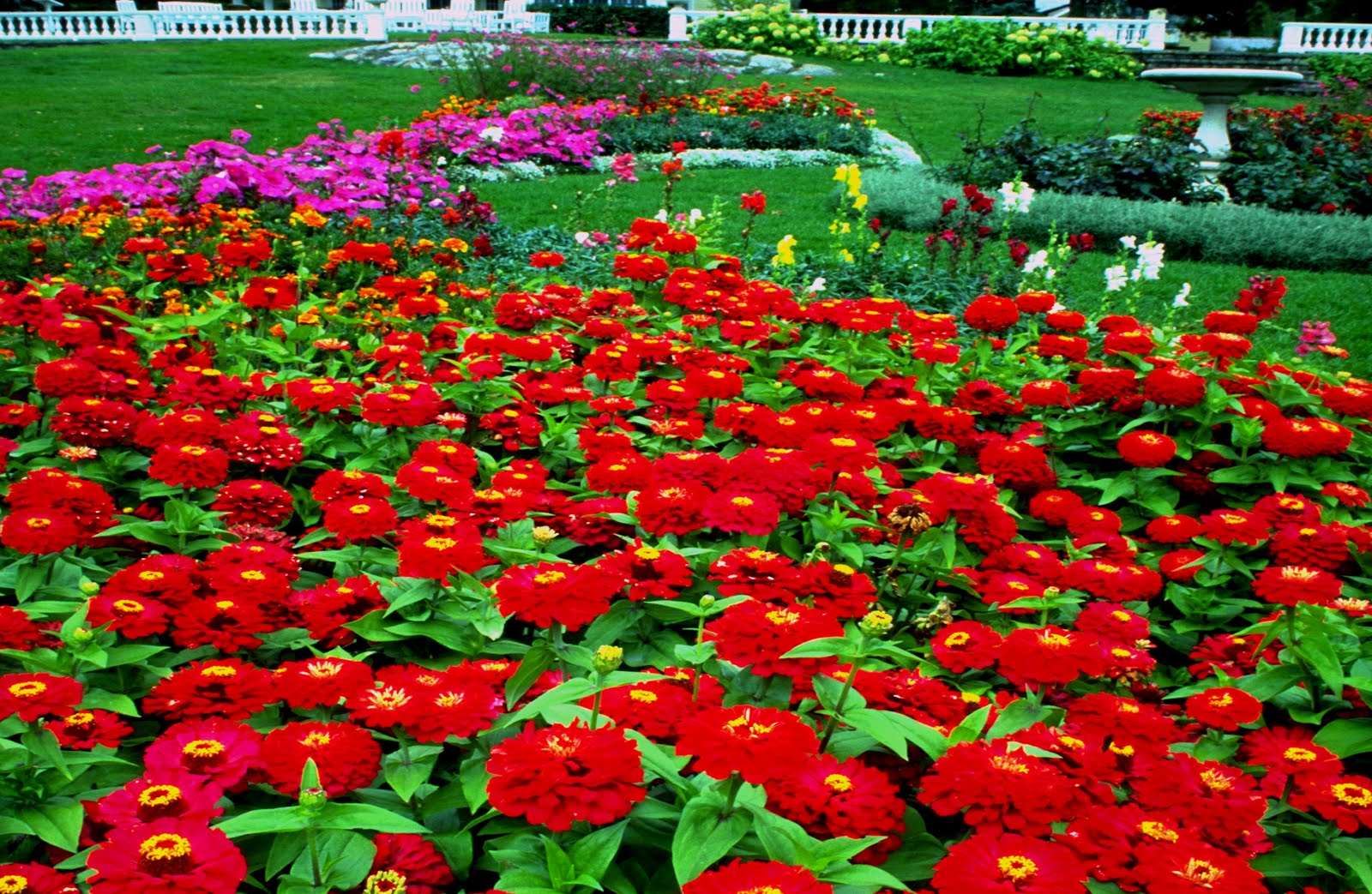 Free Gardens Wallpapers Free Beautiful Gardens Photos