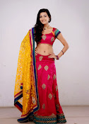 Neelam Upadhyay latest Hot Photos-thumbnail-20