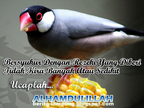 Rezeki Dalam Islam