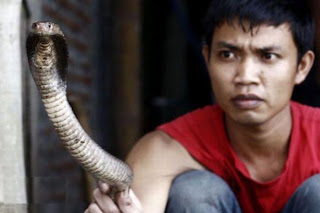 Cobra Snake Burgers In Indonesia