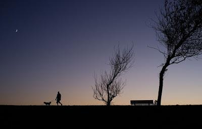 Man walking dog at night story picture