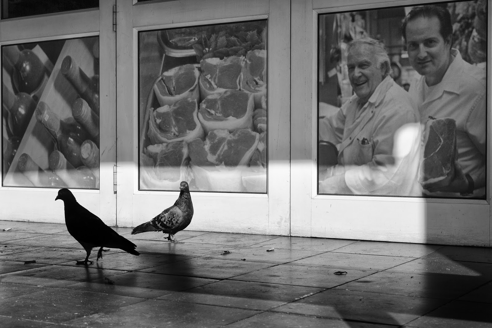 Two pigeons on the verandah of a closed restaurant