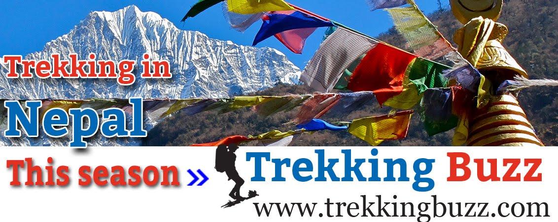Trekking Buzz, Nepal Trekking and Expedition, Adventure Travel Blog
