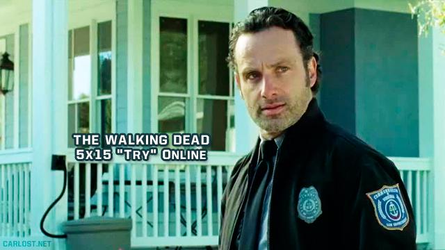 The Walking Dead 5x15 (Online)