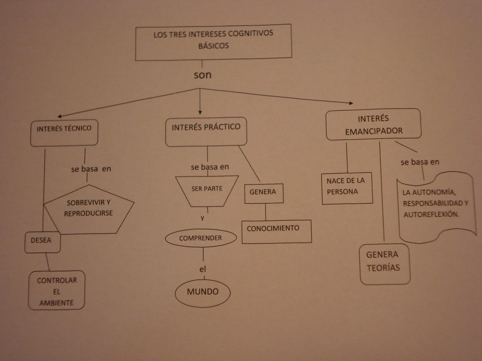 intereses cognitivos b u00e1sicos  marco conceptual  lectura producto o praxis del curriculum de grundy
