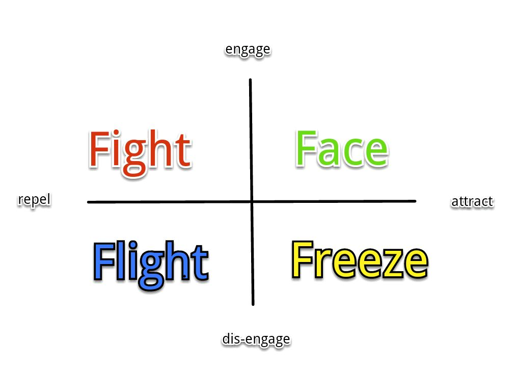 fight or flight To understand the fight or flight response it helps to think about the role of emotions in our lives many of us would prefer to focus on our logical, thinking nature and ignore our sometimes troublesome emotions, but emotions have a purpose our most basic emotions like fear, anger or disgust are vital messengers: they.