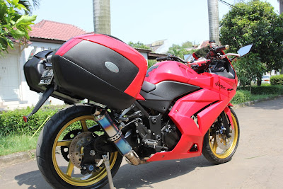 Ninja 250 touring