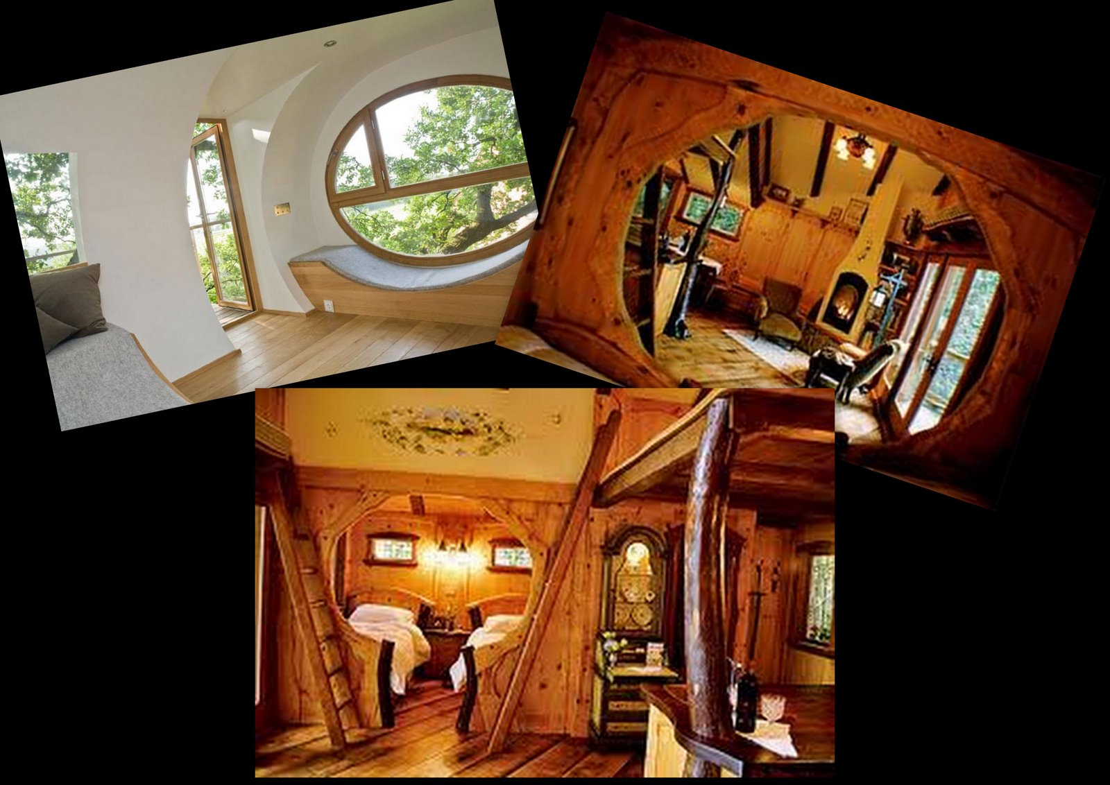 Creating a unique home treehouse interiors - Unique and new home interiors photos ...