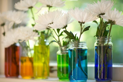 colored water in jars decoration
