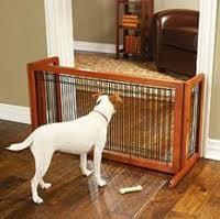 Benito el san bernardo puertas para mascotas dentro de la for Puerta seguridad perros