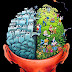 We believe that the brain merely affects consciousness