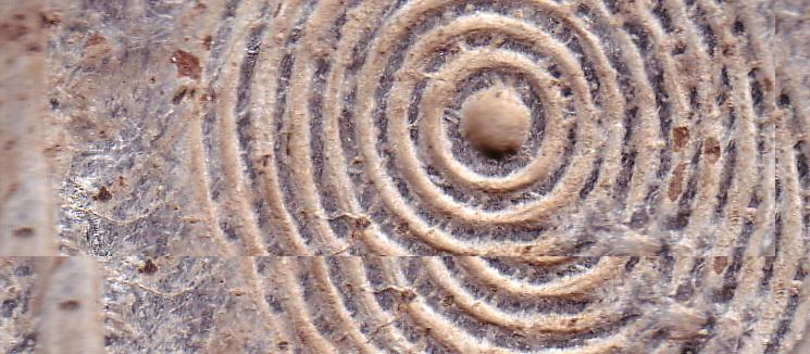 """Знак препознавања """"Сазвежђа З"""" су концентрични кругови"""