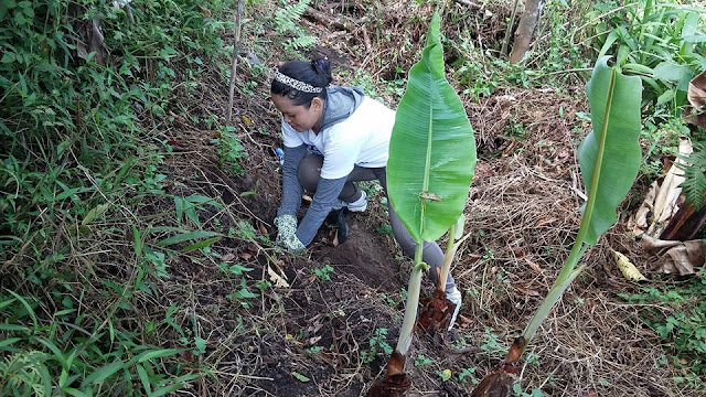 Ma'am Babylyn of CS Dept. while planting