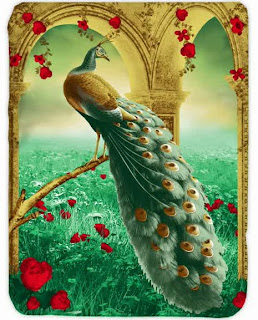 Selimut Kendra Peacock
