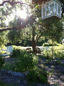 Vår lilla örtagård