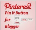 Pinterest Follow Me & Pin It Button To Blogger