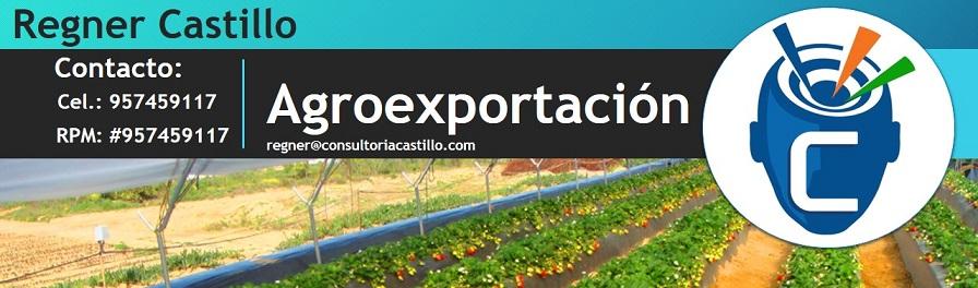 Agro Exportación