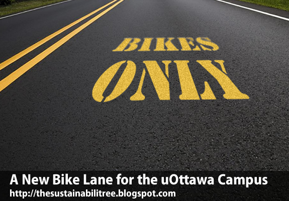 "A road with the words ""bikes only"" stenciled on it signifying the new bike lane at the University of Ottawa"