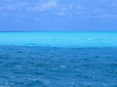 Lautan biru