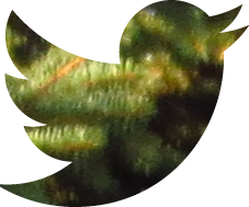 twitter green social media button