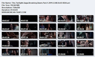 The.Twilight.Saga.Breaking.Dawn.Part.1.2011.CAM.XviD-BiDA