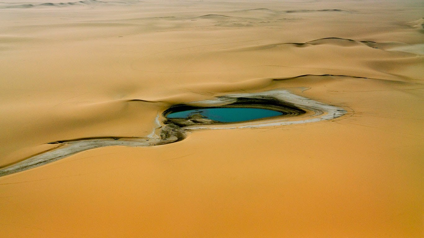 Accumulation of rain water in the Sahara Desert, east of the Aïr Mountains, Niger (© Michael Fay/Aurora Photos) 172