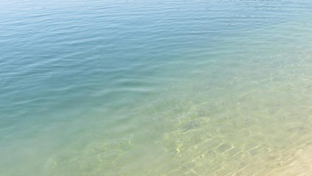 woda Piechcin