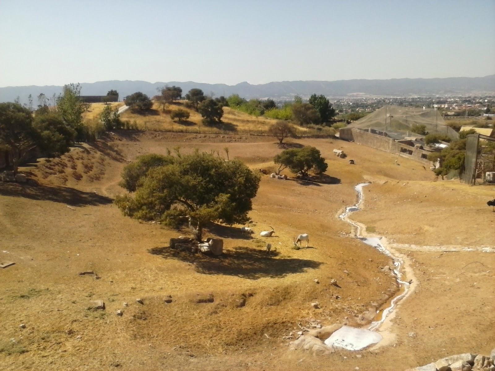 El estante de Rhiri: Escapada a Terra Natura (Murcia)