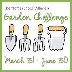HSV Garden Challenge #4