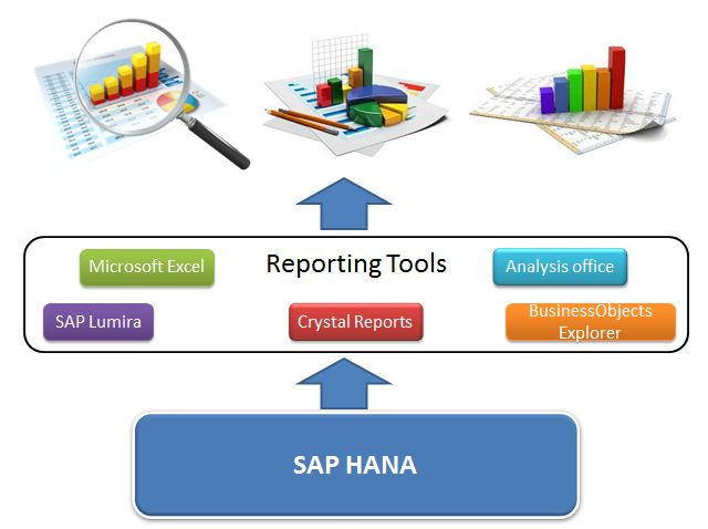 sap report We can use transaction code se38 in order to run or execute any report in sap please follow the steps below in order to run any report in sap: first go to t-code se38 and give the name of the report you want to run in this tutorial, for example, we are running a report rsusr006 which is used in a.