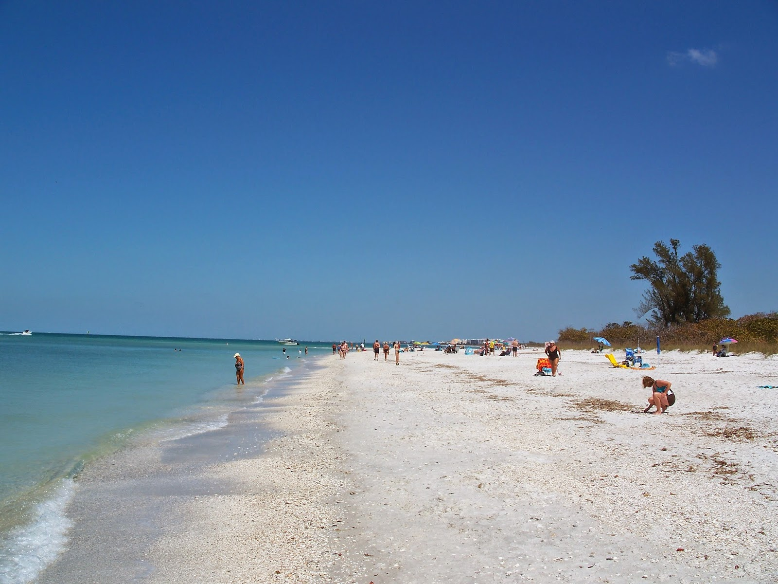 10 best beaches in the united states tvokm for Nice beaches in usa
