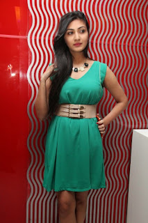 Actress Neelam Upadhyaya Pictures in Short Dress at Om Shanthi Om Audio Launch 1