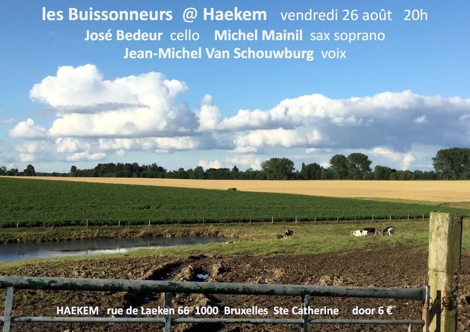 Les Buissonneurs vendredi 26 août Haekem