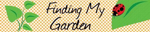 Finding My Garden