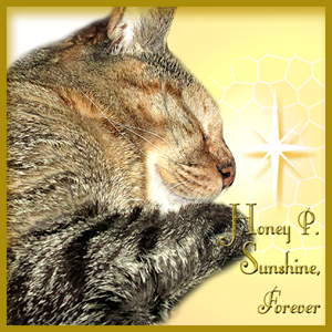 RIP HONEY P. SUNSHINE
