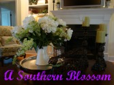 A Southern Blossom