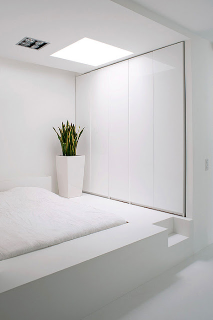 White Policy interior 06
