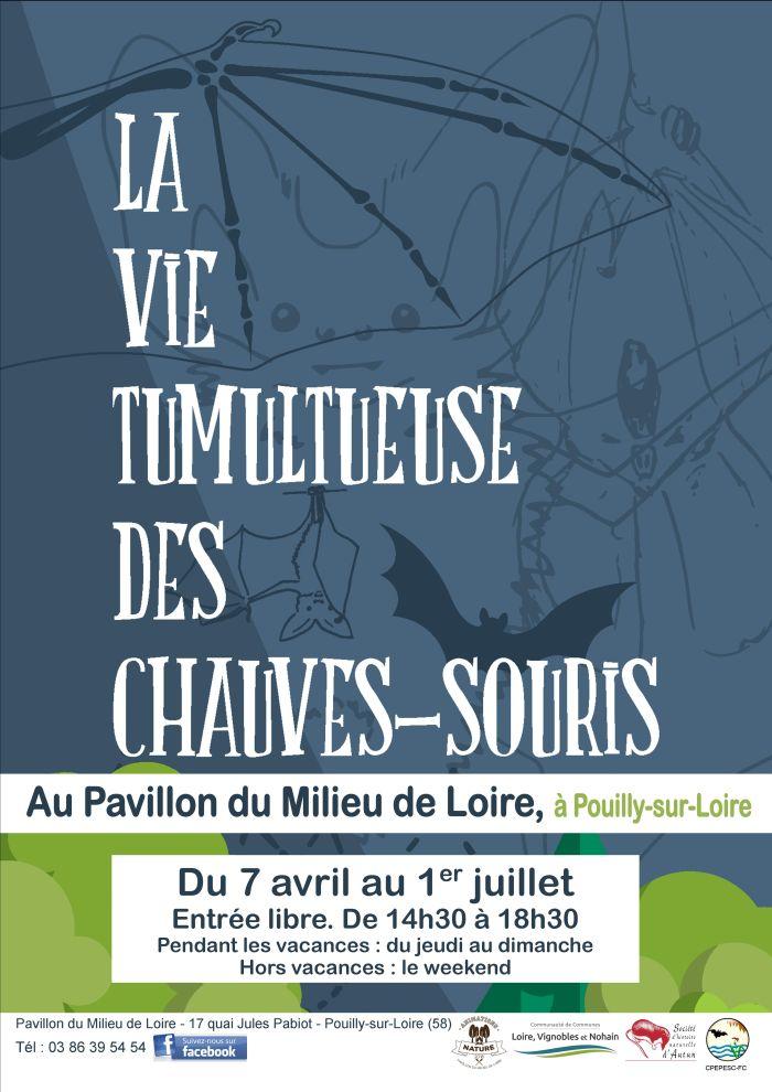 La vie tumultueuse des chauves-souris Au Pavillon du Milieu de Loire à Pouilly - sur Loire