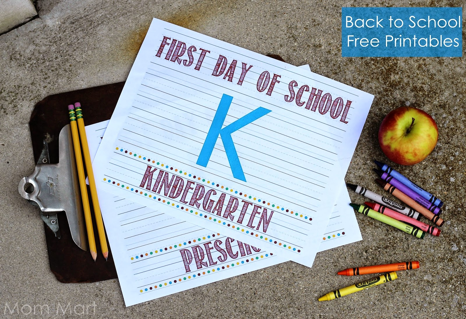 Free Printables Back to School Preschool through Eighth Grade Photo Cards and Interview Sheets