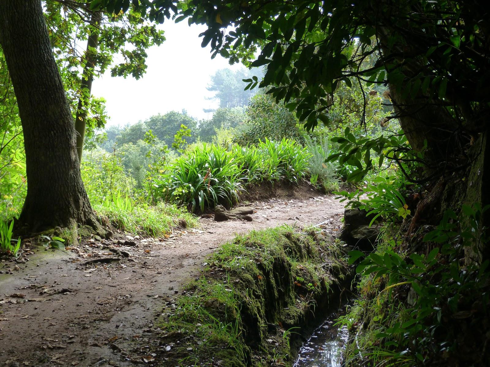 Itchyfeet Isle Of Madeira 2nd Journey