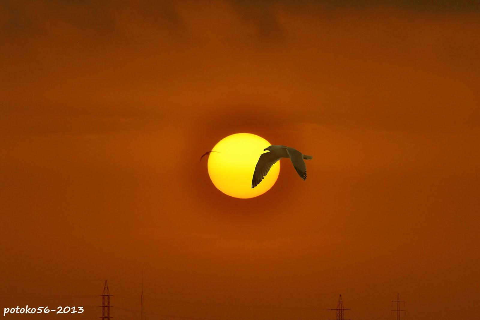 El Imperio del Sol amaneciendo en Rota