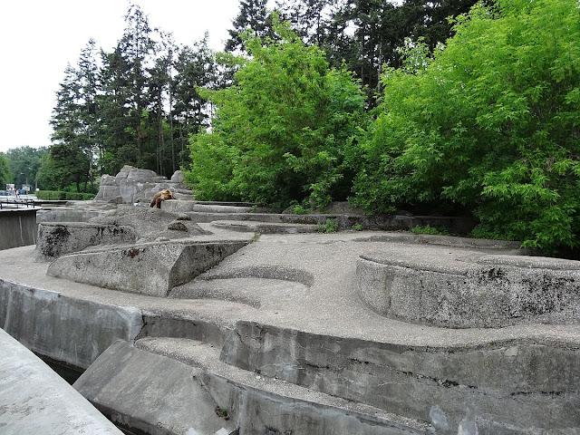 Wybieg dla niedźwiedzi (betonowa skała)