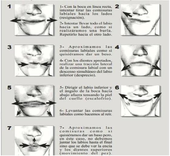 tonificación labial